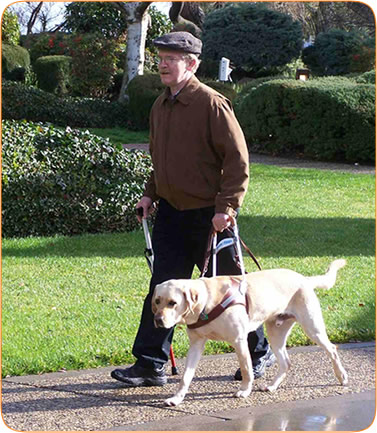 Kevin Frankeberger walking with his guide dog.